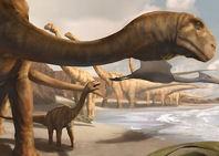 Un dinosaurio angoleño, el último superviviente de los saurópodos primitivos