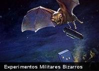 Experimentos Militares Bizarros (Parte I)