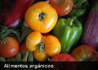 Los alimentos ecológicos tienen más nutrientes que los convencionales