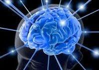 ¿Cómo tener un cerebro WIFI?