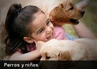 Perros y niños comparten habilidades cognitivas similares para leer expresiones humanas