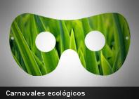 Consejos ambientales para Carnaval