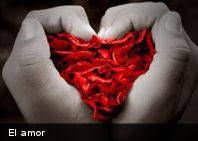 Según estudio: enamorarse toma 8,2 segundos
