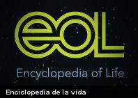 Enciclopedia recopila información de más de un millón especies