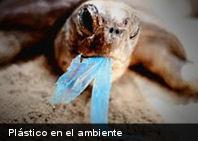 Las bolsas de plástico y su impacto sobre el ambiente