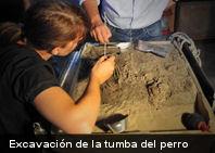 La sepultura de perro más antigua del sur de Europa tiene 7.600 años