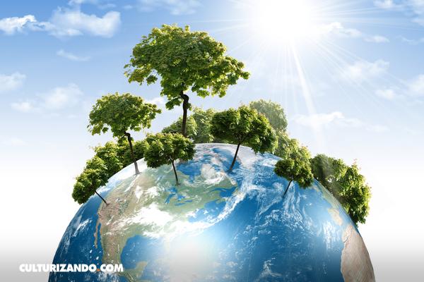Ayuda al planeta con estos 10 consejos (+Video)
