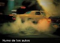 Estudio revela: el humo de los autos afecta el colesterol