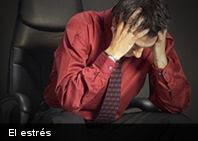 Según estudio: las mujeres manejan mejor el estrés que los hombres