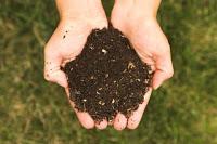 ¿Cómo hacer compost con tus residuos?
