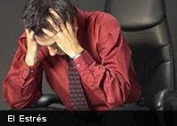 El estrés puede cambiar la forma del cuerpo