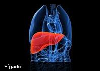 ¿Es posible curar la hepatitis C?
