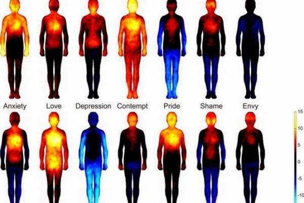 Así se distribuyen las emociones en el cuerpo humano