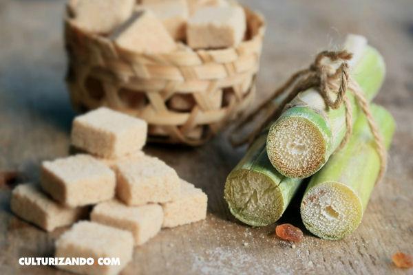 ¿Conoces el interesante origen del azúcar?