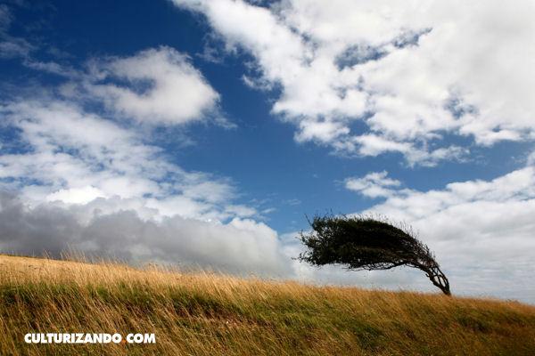 Estos son los lugares más ventosos del mundo