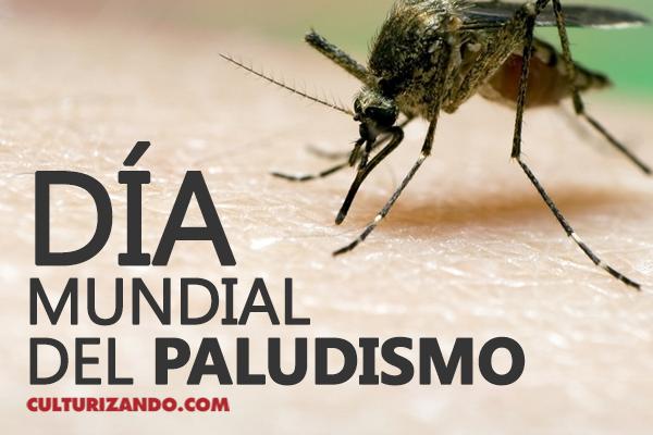Día Mundial del Paludismo o Malaria