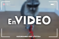 En Video: ¡Mapache ciclista!