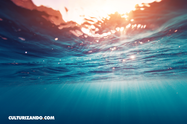 La Nota Curiosa: ¿Por qué el mar es salado?