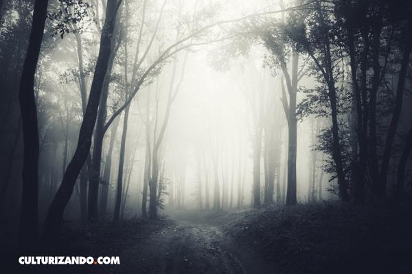La Nota Curiosa: ¿Cuál es la diferencia entre niebla y neblina?