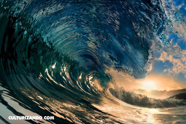 La Nota Curiosa: ¿Cómo se forman las olas?