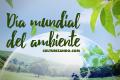 Hoy es el Día Mundial del Ambiente