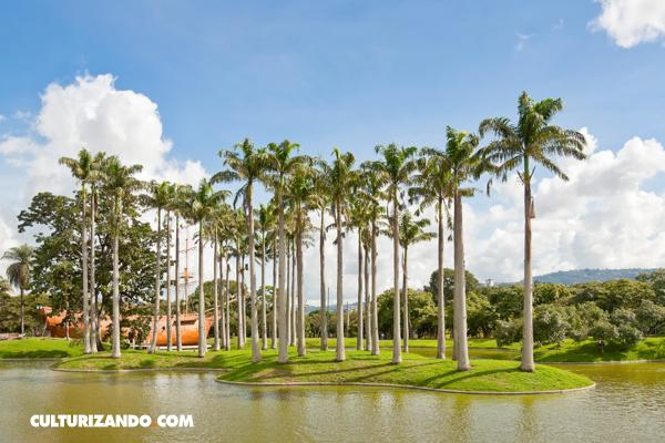 Caracas 08 - Parque del Este
