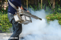 Agresiva campaña anti-mosquitos en Miami