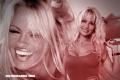 Pamela Anderson en 10 curiosidades