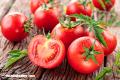 La Nota Curiosa: El origen del tomate