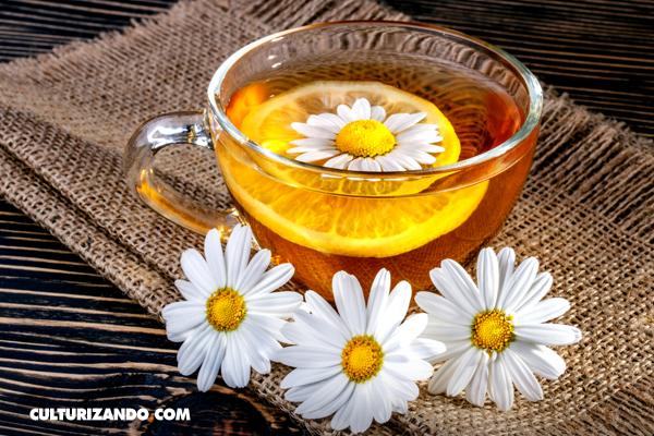 Infusiones y tés: bebidas diferentes