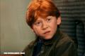 ¿A cuál película de Harry Potter corresponden estas fotos de Ron Weasley?