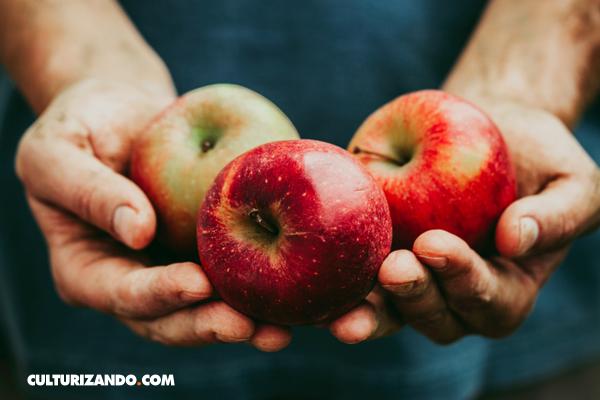 La Nota Curiosa: ¿Sabes qué es un frugívoro?
