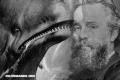 Cosas que quizás no sabías sobre Moby-Dick