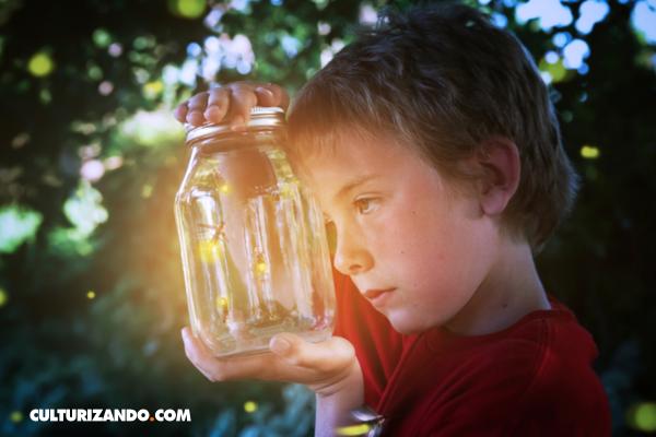 ¿Por qué las luciérnagas tienen luz?