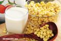 ¿Qué tipo de proteína debemos consumir?