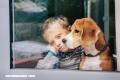Los perros sienten el dolor de las personas y buscan aliviarlo