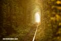 Lugares increíbles: Túnel del amor – Ucrania