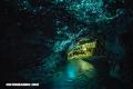 Lugares increíbles: Cuevas luminiscentes de Waitomo