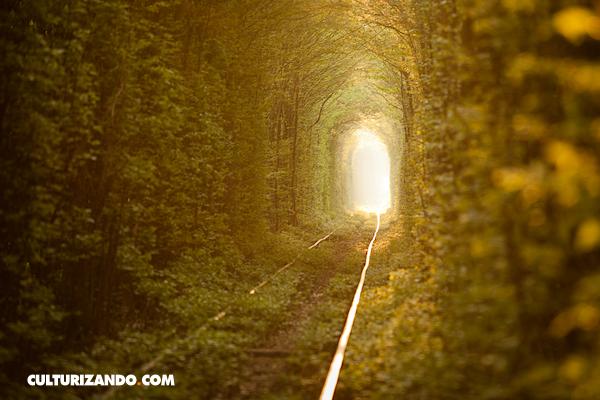 Lugares increíbles: Túnel del amor - Ucrania