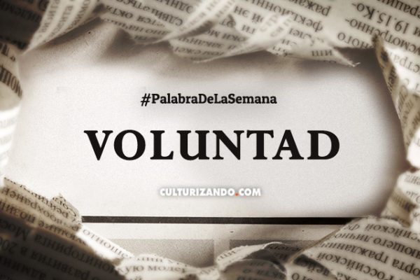 Palabra de la semana: «Voluntad» (+Frases)