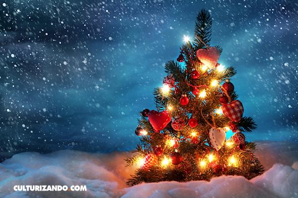¿De dónde viene el árbol de Navidad?