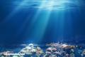 7 datos que no sabías sobre los océanos