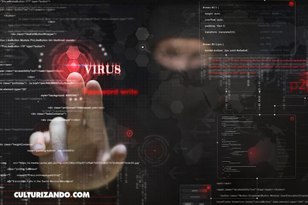 La Nota Curiosa: El origen del 'virus informático'