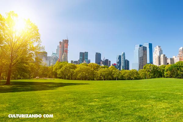 Vivir cerca de áreas verdes mejora la salud mental