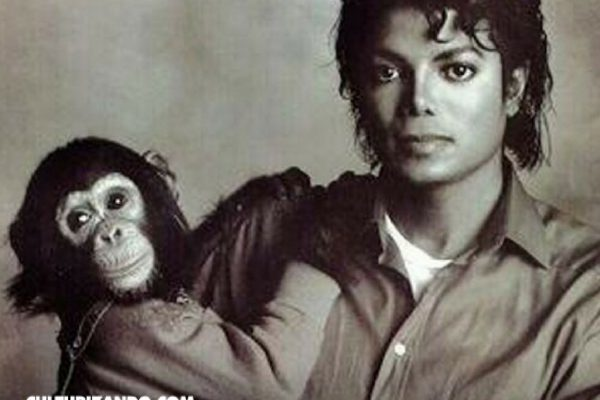 El mono de Michael Jackson tendrá su propio biopic