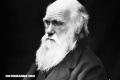 6 curiosidades sobre Charles Darwin