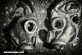 Horrores Humanos: ¿Qué es el gas sarín?