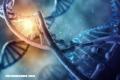 Quimeras humanas: un mismo ser con ADN diferentes