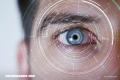 Test: ¿Qué tan buen ojo tienes? ¡Compruébalo!