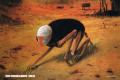 La maldición del artista Zdzisław Beksiński